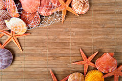 Shell and starfish frame Stock Photo