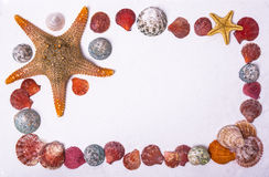 Shell and starfish frame Royalty Free Stock Photography