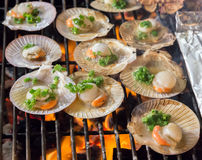 Shell steaks on the grill cooking seafood. Barbecue cooking seafood Shell steaks on the grill. background eat Restaurant Royalty Free Stock Photo