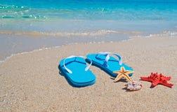 Shell, stelle marine e flip-flop Immagini Stock