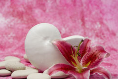 Shell, stones and lily flower Stock Photography