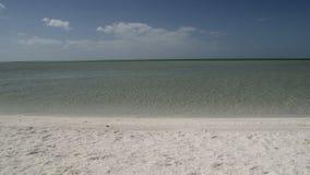Shell-strand in het Nationale Park van de Haaibaai, Westelijk Australië stock videobeelden