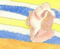 Shell sulla coperta alla spiaggia Immagini Stock Libere da Diritti