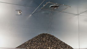 The shell sunflower seeds in a heap fray. Bunker with sunflower oil production waste. The shell sunflower seeds in a heap fray. The waste in the production of stock video footage