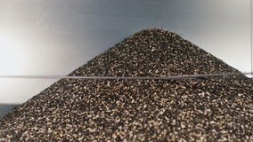 The shell sunflower seeds in a heap fray. The waste in the production of sunflower oil and seeds cleaning stock footage