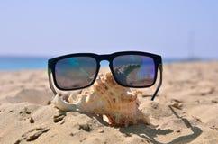 Shell and sunglasses on the sand. Beach near the blue ocean Royalty Free Stock Photos