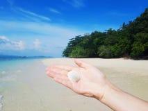 Shell sur la main sur le fond tropical ensoleillé image libre de droits