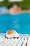 Shell at swimming pool Stock Image