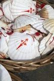 Shell Symbol de Camino de Santiago Fotos de archivo