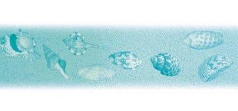 Shell textuurblauw stock illustratie