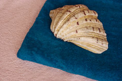 Shell and towel. Pink and blue towels topped by a large shell Stock Photography