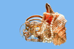 Shell And Treasure images stock