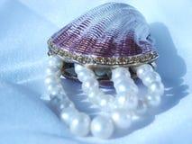 Shell und Perlen Stockfoto