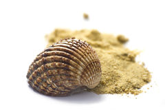 Shell und Sand getrennt auf Weiß Lizenzfreies Stockbild