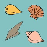 Shell ustawia Fotografia Royalty Free