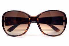 Shell van de damesschildpad zonnebril royalty-vrije stock foto's