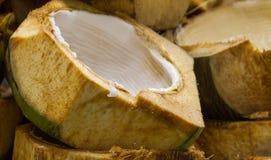 Shell van de kokosnoot Stock Fotografie