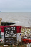 Shell van de oester recycling Royalty-vrije Stock Foto's