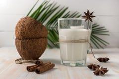 Shell van kokosnoot en kokosmelk in glas met kaneel Stock Afbeelding
