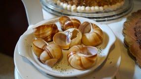 Shell vazios dos caracóis do escargot imagem de stock royalty free