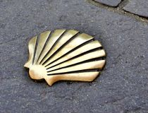 Shell in the Way of St James Stock Photography