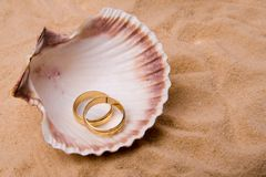 Shell and wedding band. Sea shell in the sand Stock Images