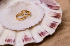 Shell and wedding band. Sea shell in the sand with wedding band stock photography