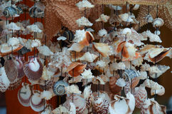 Shell Wind Chimes. In a shop in Progreso, Mexico royalty free stock photos