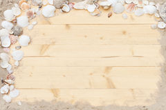 Shell wood background Stock Photos