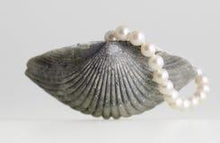 Shell y perla del mar Fotografía de archivo libre de regalías