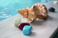 Shell y piedras Imagen de archivo