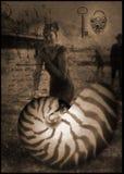 Shell y postal vieja Imagenes de archivo