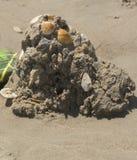 Shell Zaskorupiał się piaska kasztel Obrazy Stock