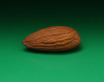 Shelled Almond Stock Image