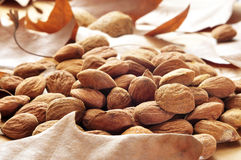 Shelled almonds Royalty Free Stock Image