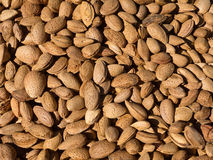 Shelled Almonds Stock Photos
