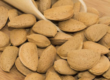 Shelled Almonds Stock Photo