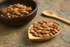 Shelled Almonds Stock Images