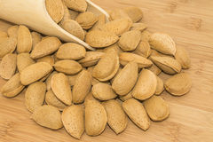 Shelled Almonds Royalty Free Stock Photos
