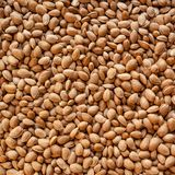 Shelled almonds. Top view of heap of shelled, unpeeled almonds royalty free stock photos