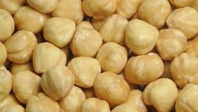 Shelled Hazelnut stock footage