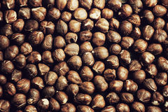 Shelled hazelnuts Stock Photo