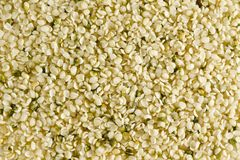 Shelled hemp seeds Royalty Free Stock Images
