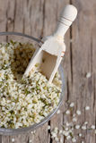 Shelled hemp seeds Stock Images