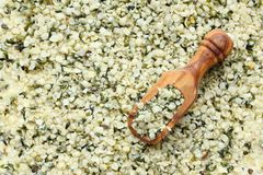 Shelled hemp seeds in wooden scoops, one of the superfoods Stock Images