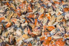 Shelled mussels in Thailand at the fish market in Chanthaburi. Shelled mussels in Thailand at the fish market in Chanthaburi royalty free stock image