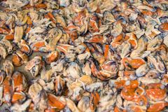 Shelled mussels in Thailand at the fish market in Chanthaburi. Shelled mussels in Thailand at the fish market in Chanthaburi stock photo