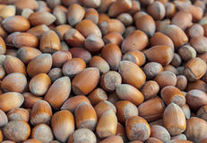 Shelled nuts Royalty Free Stock Photography