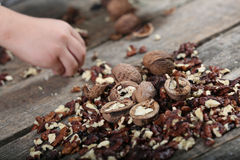 Shelled nuts Royalty Free Stock Photo