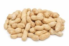 Shelled peanuts (Arachis hypogaea) Royalty Free Stock Photography